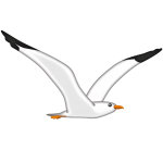emoji® – The Official Brand | Seagull